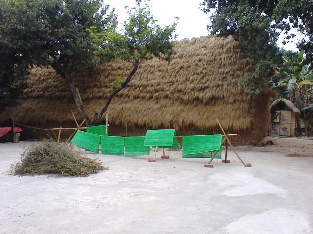 Bonolakshmi Backyard