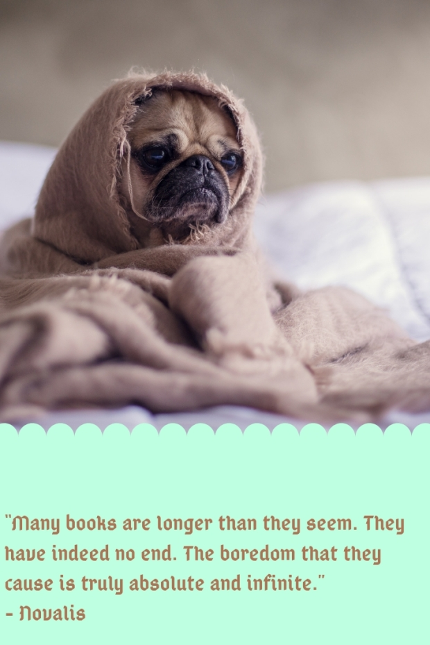 5 meh books I read in 2018